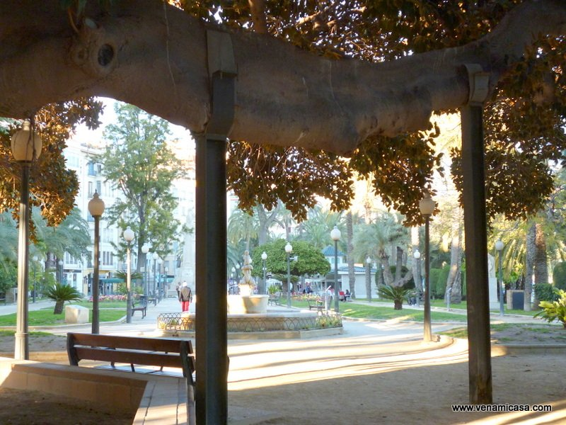 Alicante, cultural programs,homestay (6)