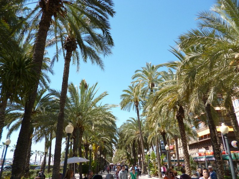 Alicante,Spain-promenade1.1