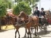Feria de Sevilla,Spain,Espagne,carriages,voitures (5)