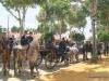 Feria de Sevilla,Spain,Espagne,horseman,cavalier (9)