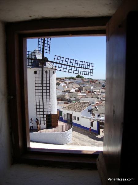 a-view-from-the-windmill-window