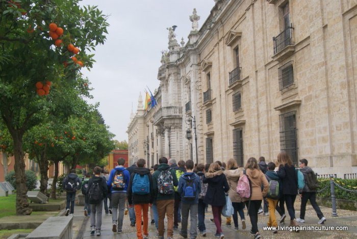 Sevilla,spain,educative tours (4)