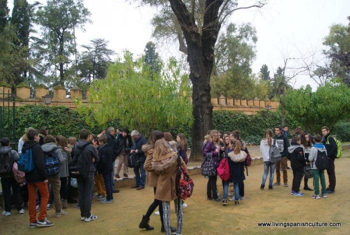 Sevilla,spain,educative tours (5)