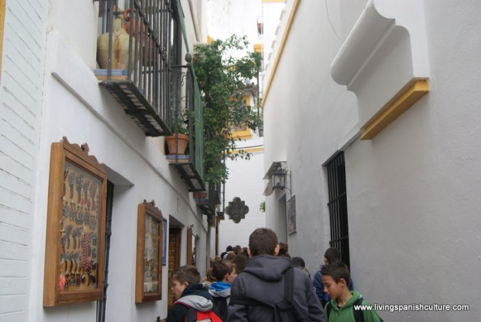 Sevilla,spain,educative tours (7)