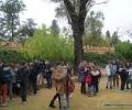 Sevilla,spain,educative tours (5)