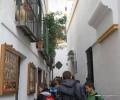 Sevilla,spain,educative tours (7)