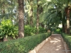 san-vicentes-orange-grove-and-gardens-2