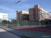 universidad-politecnica-de-valencia-campus-sports