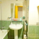 Homestay Valencia, Spain, G. Urrutia, bath