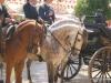 Feria de Sevilla,Spain,Espagne,horseman,cavalier (1)