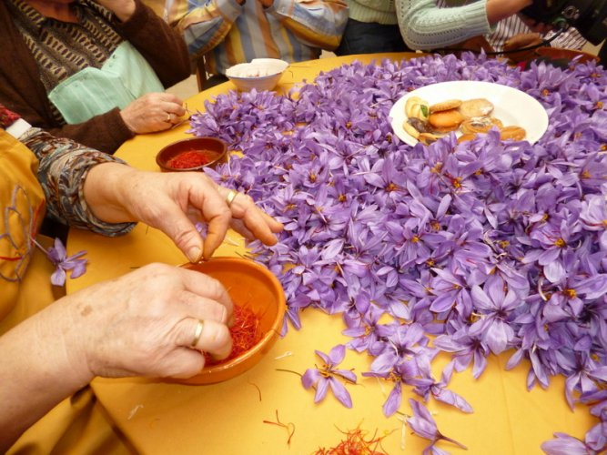 Pruning of Saffron