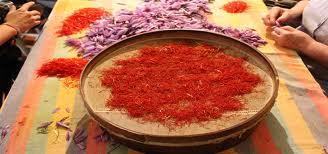 La Mancha Saffron, the red gold