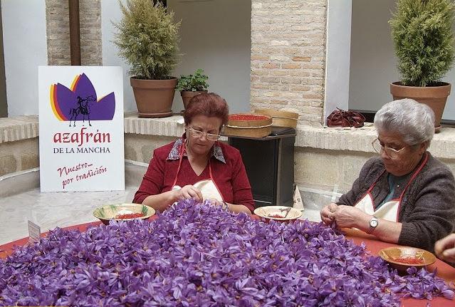la-mancha-saffron-pruning