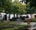 Sevilla,spain,educative tours (6)