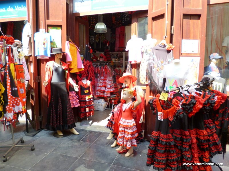 Valencia,Spain,cultural programs,homestay